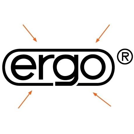 Концепция ERGO